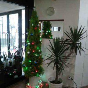 クリスマスツリーを飾りました